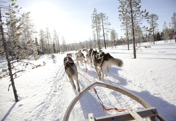Erlebnisreise nach Finnland