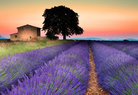 Erlebnisreise in der Provence in Frankreich