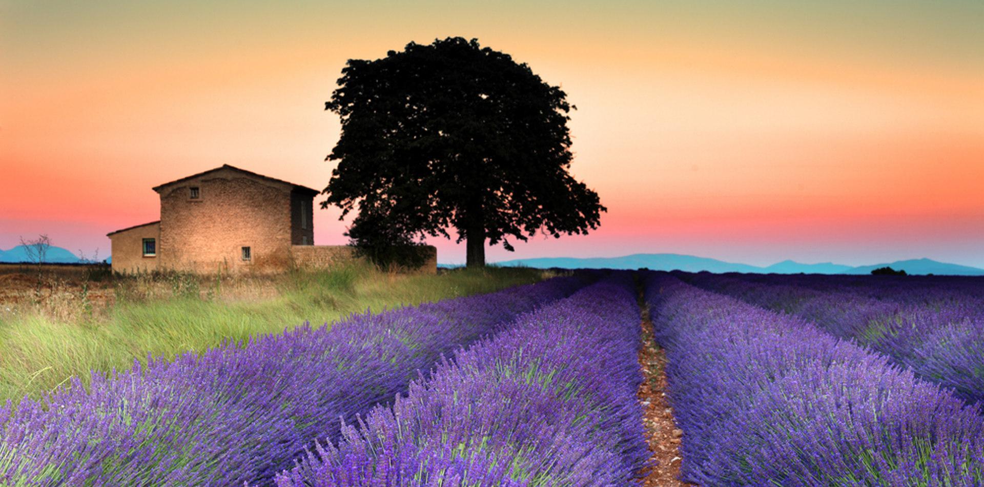 Luxusurlaub in Frankreich - Rundreise Provence