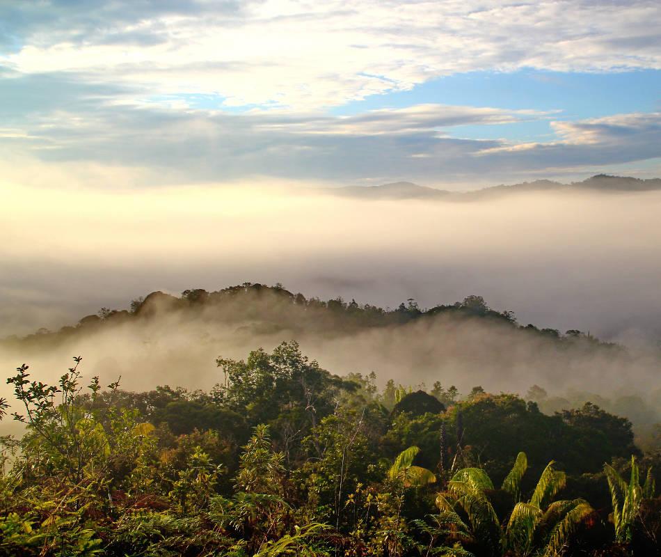 Außergewöhnliches Reiseziel, Luxusreise Borneo, Reise nach Borneo