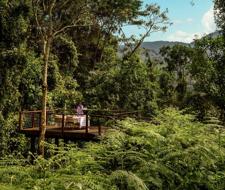 Luxusreise Afrika, One & Only Nyungwe-House, Erlebnisreise Ruanda, Gorilla-Safari